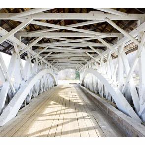 Мосты 5348