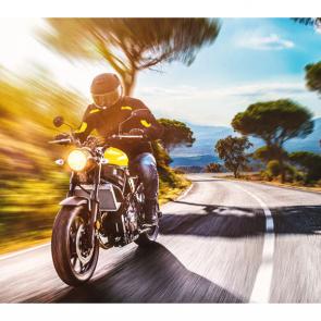 Мотоциклы 13862