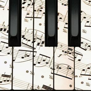Музыкалные 12527