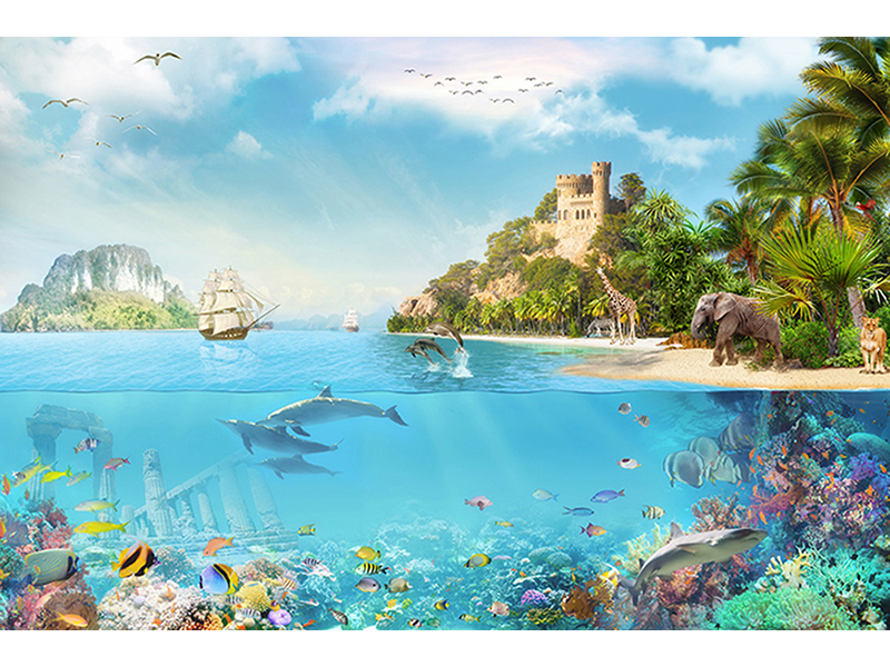 На земле и под водой 2397