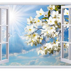 Небо из окна