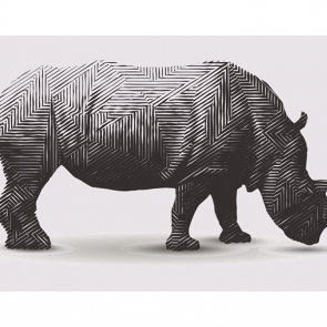 Носорог 5721