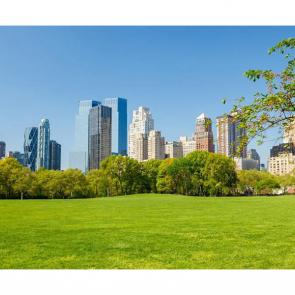 Нью Йорк 6439
