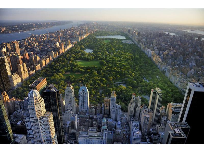 Нью Йорк 6463