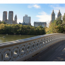 Нью Йорк 6478