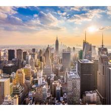 Нью Йорк 6542