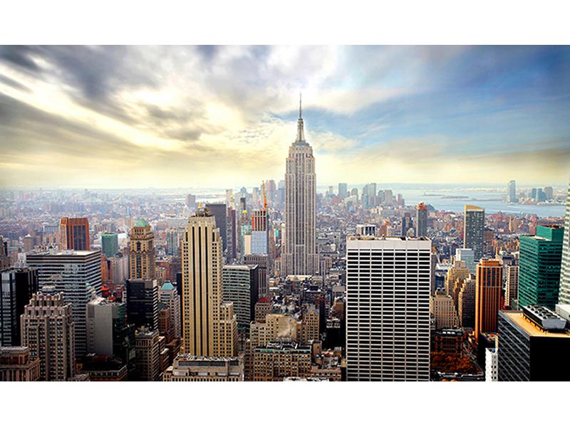 Нью-Йорк 1446
