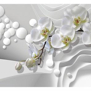 Орхидеи на волнах