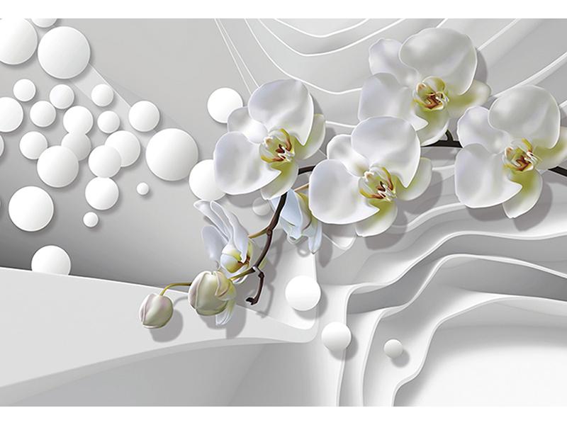 Орхидеи на волнах 1410