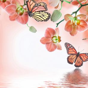 Орхидеи с бабочками