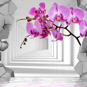 Орхидея  сиреневая