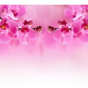 Орхидея в зеркале