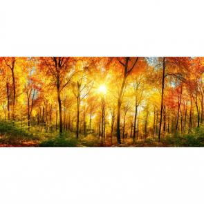 Осень 13809