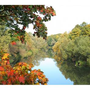 Осень над рекой