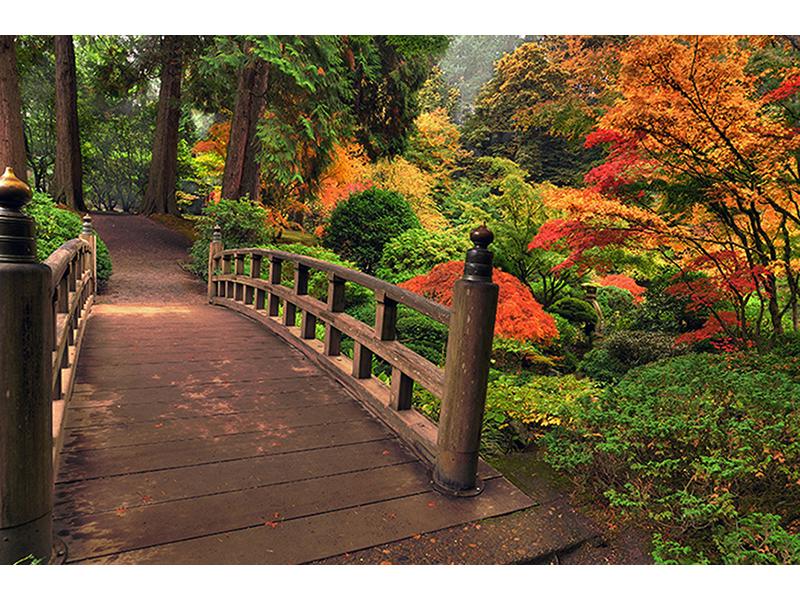 Осенний мост 1397