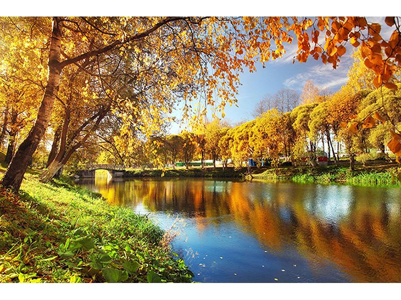 Осенний пруд 1393