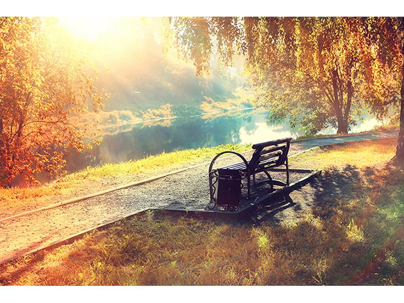Осенняя прогулка 1390