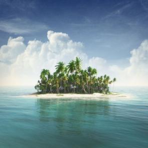 Остров 11342