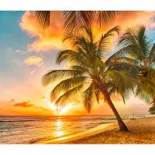 Остров Барбадоса