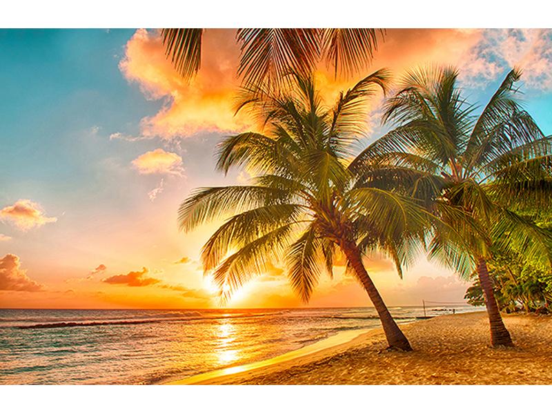 Остров Барбадоса 2531