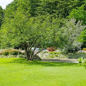 Отдых в парке на лужайке