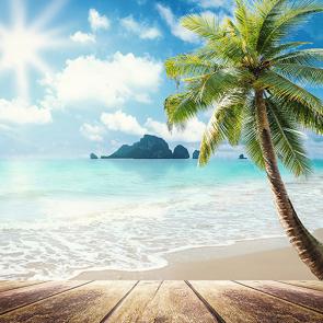 Пальма и остров