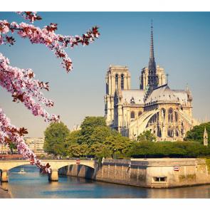 Париж 6575