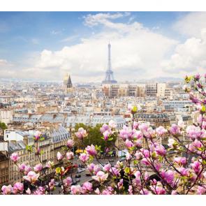 Париж 6577