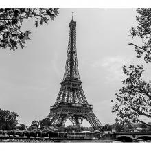 Парижский роман