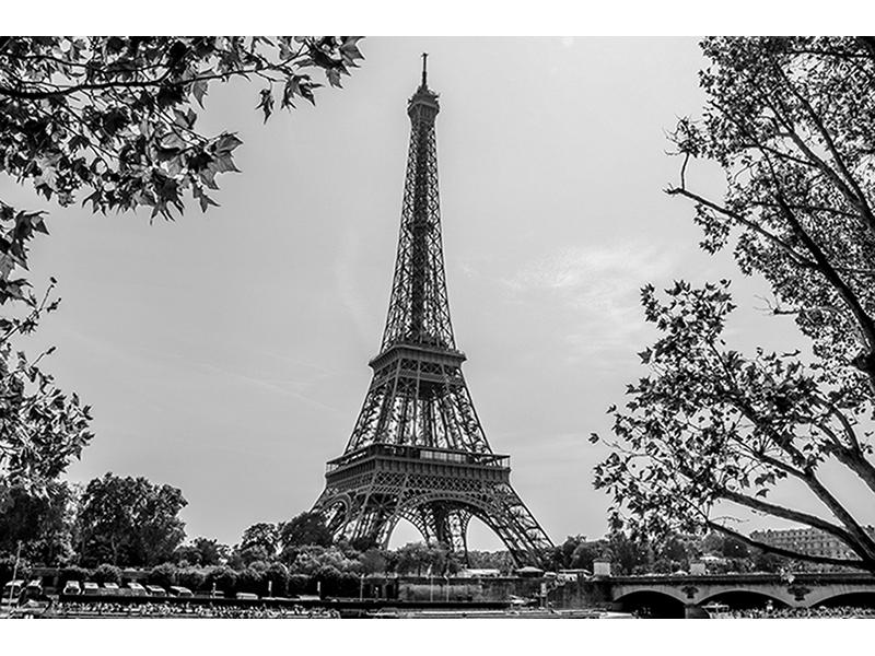 Парижский роман 1335