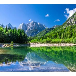 Парк в Словении