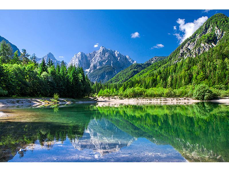 Парк в Словении 1330