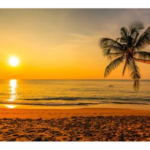 Пляж 5392