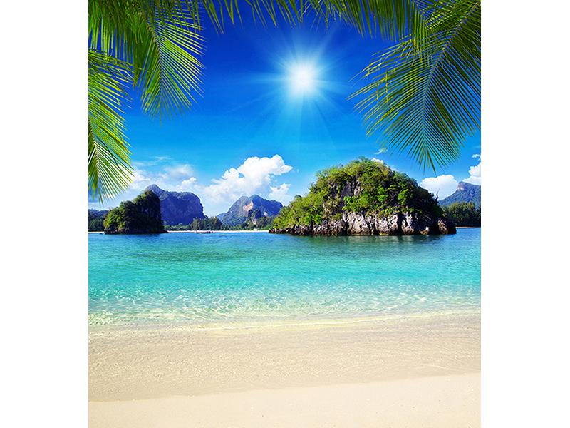 Пляж в тропиках 2546