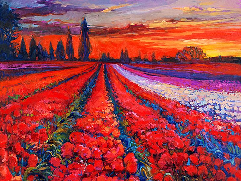 Поле тюльпанов 1286