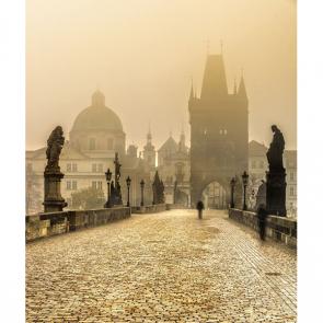 Прага 6595