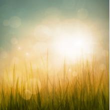 Природа рассвет 00780