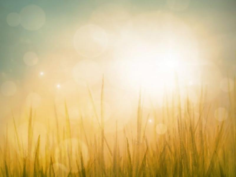 Природа рассвет 00780 7361