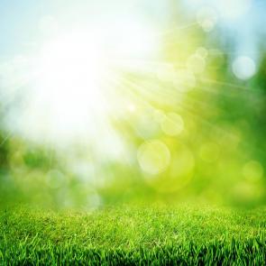 Природа рассвет 00789
