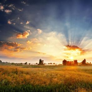 Природа рассвет 08554