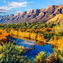 Природа река 08606