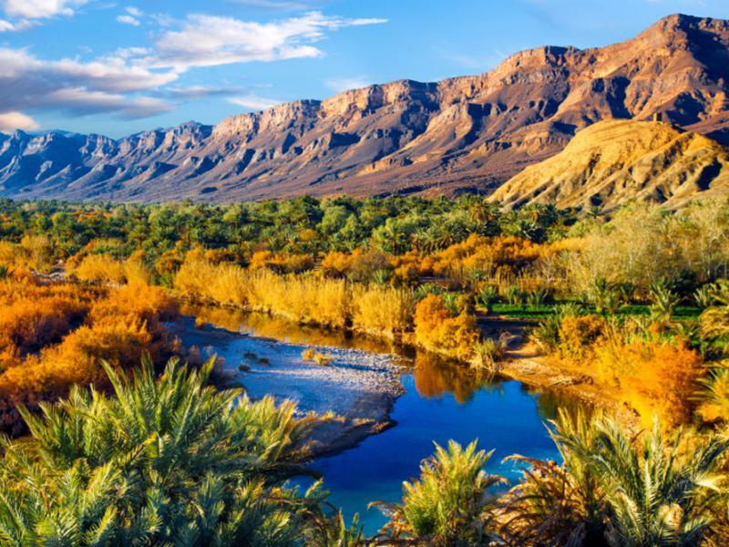Природа река 08606 7398