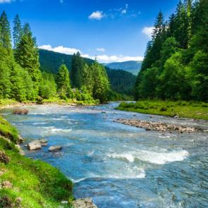 Природа река 11213