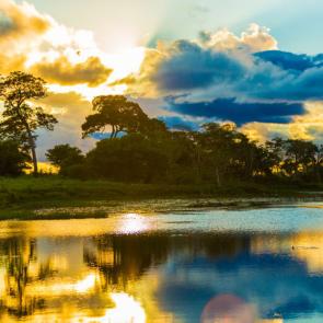Природа река 11284