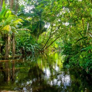 Природа река 11575