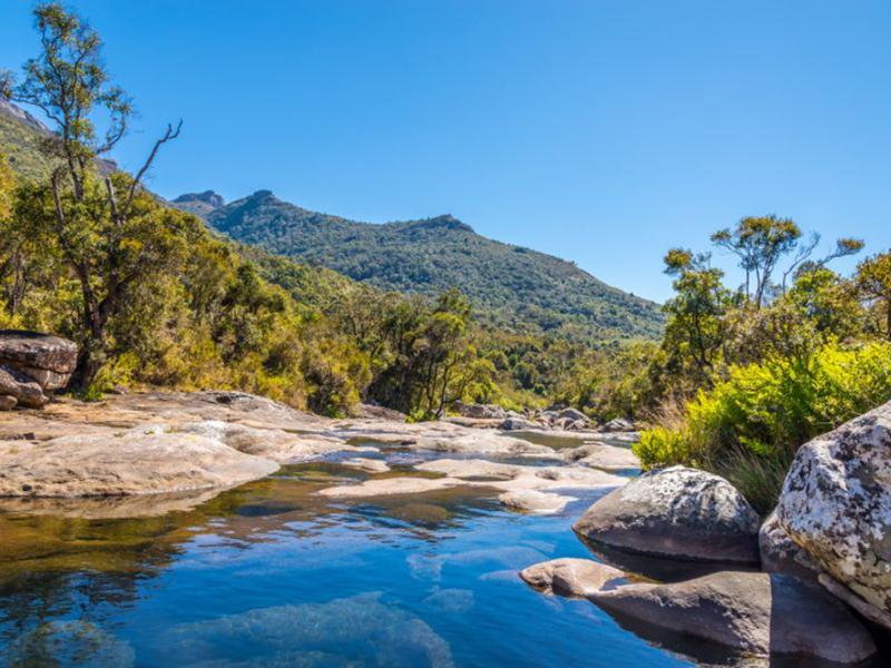 Природа река 11772 7411