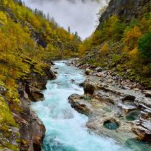 Природа река 12531