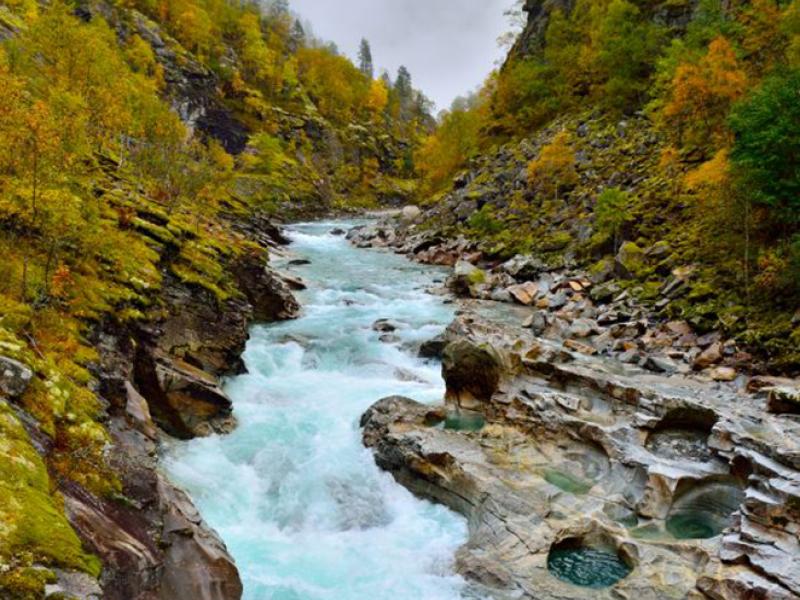 Природа река 12531 7412