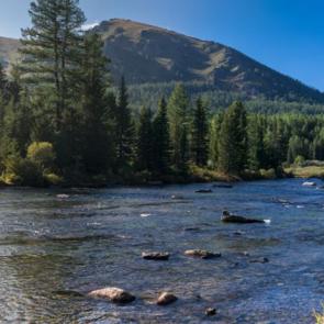 Природа река 13844