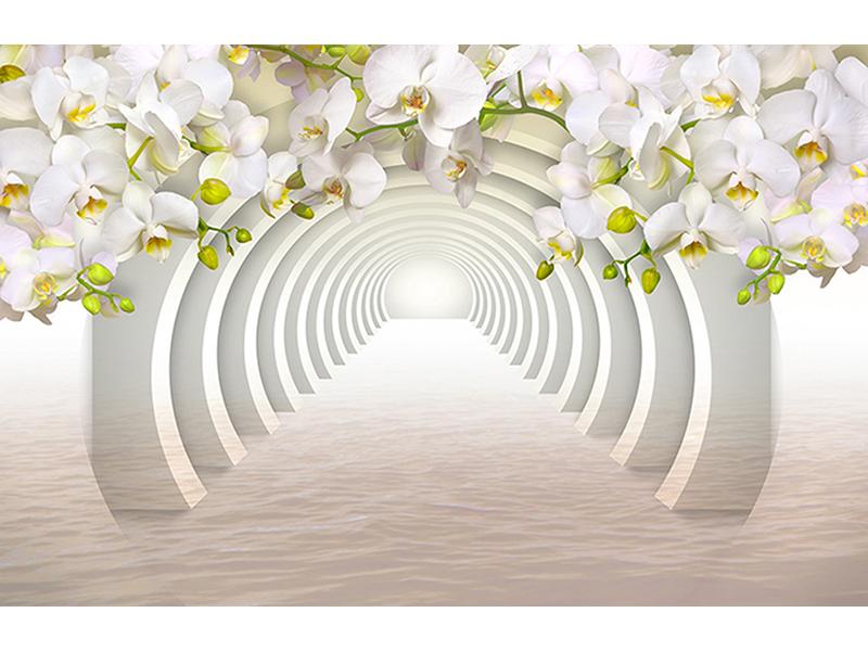 Проход с орхидеями 1268